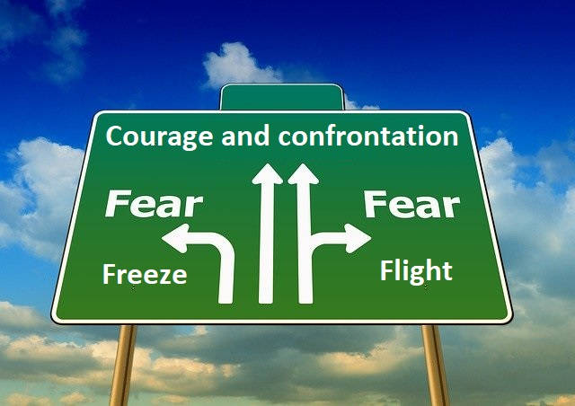 Смелост и конфронтация или страх и бягство