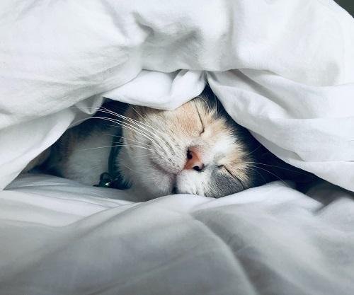 Практики за добър сън